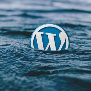 WordPress – Dobrý sluha nebo zlý pán?