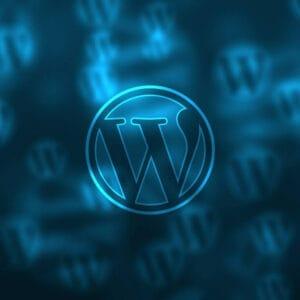 Nejpoužívanější WordPress pluginy v Brilu